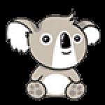 Profile photo of Koala